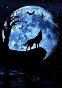 〜人狼ゲーム🐺👤〜