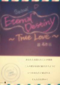 ☆Eternal Destiny☆~True Love~