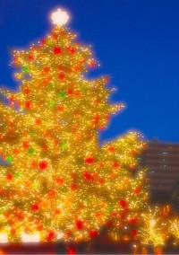 クリスマスの片想い