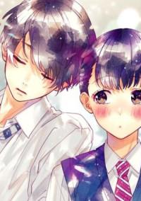 少女漫画みたいな恋がしたい人に読んで欲しい小説((✧σωσ)
