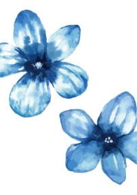 Flowers~シークレット小説~