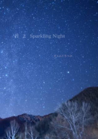 君  と  Sparkling Night