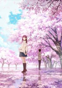 桜🌸の木の下で生徒会長の君に恋をした