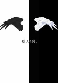 堕 天 の 翼 。