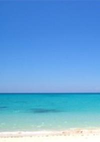 真夏の海、君と。