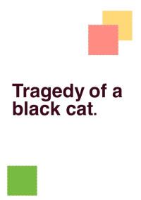 とある黒猫の悲劇
