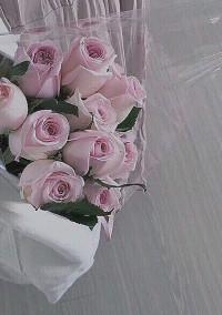 花 の 種