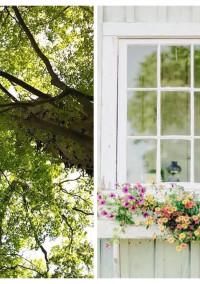 『樹木の霊』〜木霊(こだま)の詩(うた)