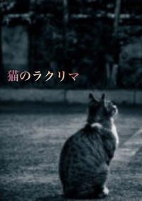 猫のラクリマ