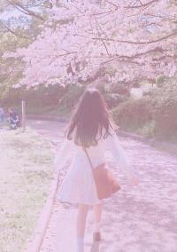 桜の花は儚くて...