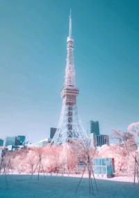 ひつじ雲部屋 💙🐏💛 〜青空公式ファンクラブ〜