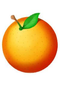 オレンジ色の日