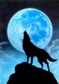 恐怖の人狼ゲーム