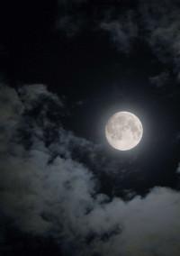 満 月 ノ 夜 を 君 と