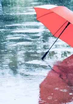 雨音、戯言、その先に