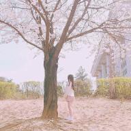 桃夏_hokuto🐖🥀🔹
