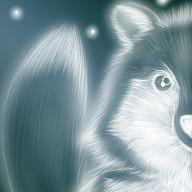 狐狗狸さん