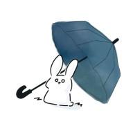 雨兎と申す者。☔️🐰