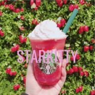 STARKITTY