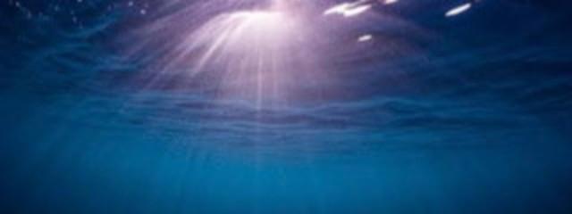 海星🐱💙🎧さんの壁紙画像