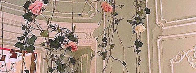 yuuki  さんの壁紙画像