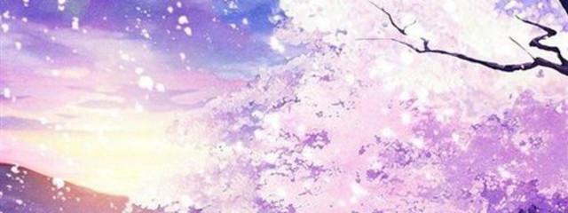 美由さんの壁紙画像