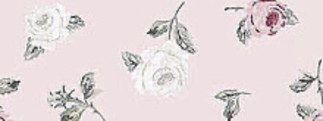 夜蝶さんの壁紙画像