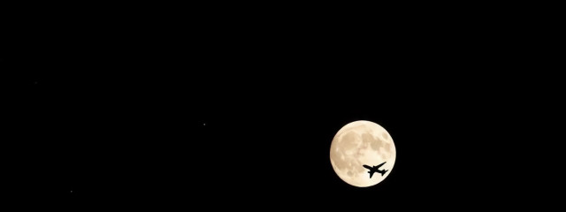 ⛓ 如月  淶翔 🥀さんの壁紙画像