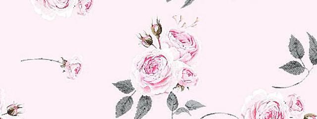 琴 葉さんの壁紙画像