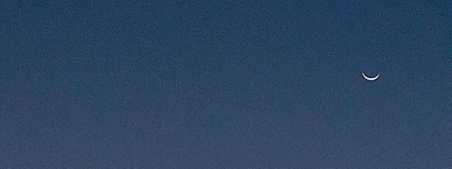 竜星🦖✨さんの壁紙画像
