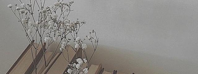 𝑆𝑜𝑜𝑔𝑦𝑢_𝑐さんの壁紙画像