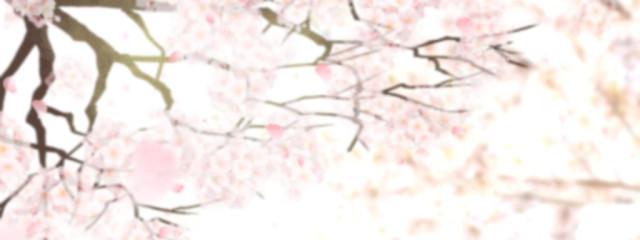 夏宮あやめさんの壁紙画像