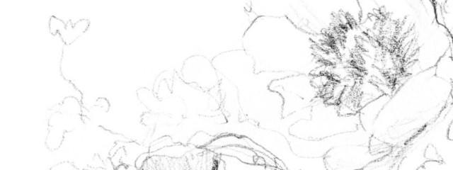 澄さんの壁紙画像