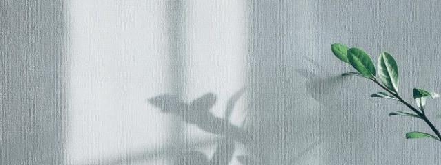 ぎゅ ; 🔅さんの壁紙画像