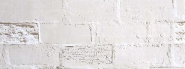 キャベツさんの壁紙画像