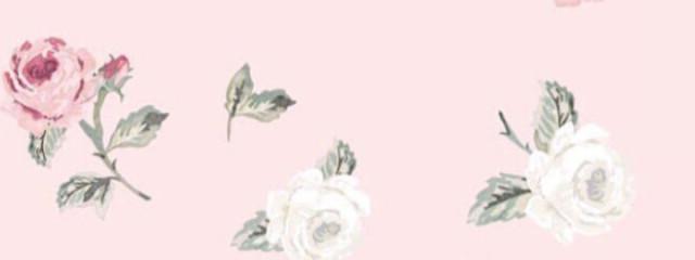 碧 -アオイ-さんの壁紙画像